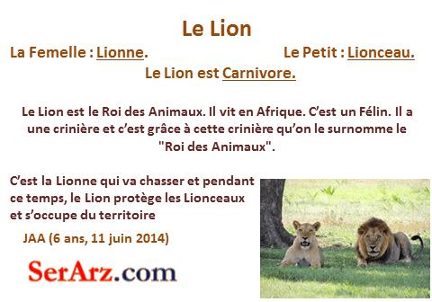 Les animaux du monde - Animaux du roi lion ...